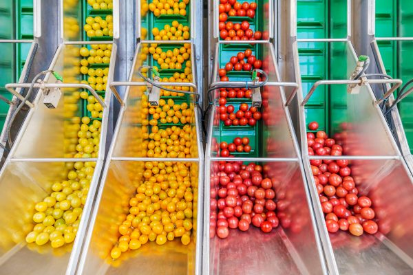 MSI-Services-secteurs-activites-agroalimentaire