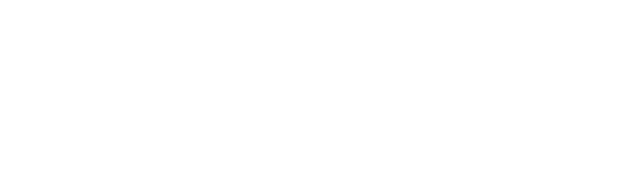 MSI Services